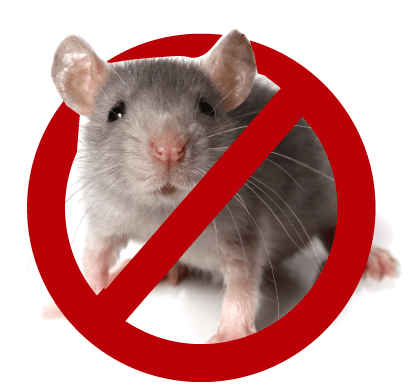 建築物ネズミ昆虫等防除業